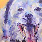 Blue dog by christine purtle