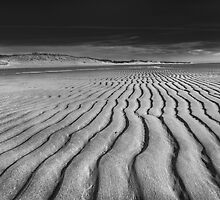 Unusual Tranquility - Black and White Photography by capecodart