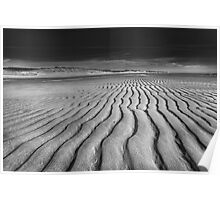 Unusual Tranquility - Black and White Photography Poster