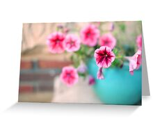 Pink Patunia Greeting Card
