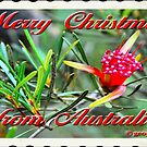 Merry Christmas from me in Australia by George Petrovsky