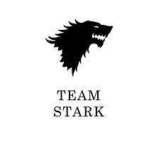 Team Stark iPad Case by fleurblackrose