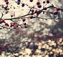 Winter by Anne Staub