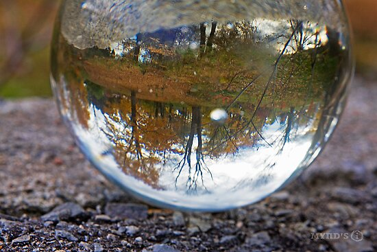 Reflections of Autumn by Ginny Fobert