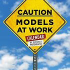 Caution: Models At Work by Jeff Zoet