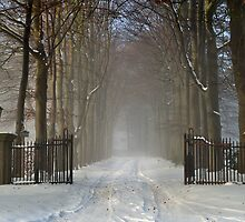 Wintry welcome by Javimage