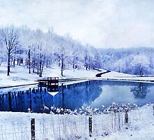 Peaceful Winters Day by Darren Fisher