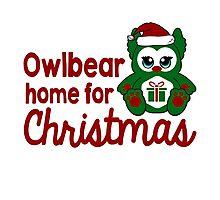 Owlbear Home for Christmas - Gamer Christmas  Photographic Print