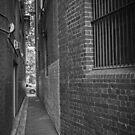 Melbourne Lanes Project - Langs Lane by Colin  Ewington