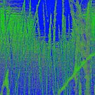 Reeds On Blue by Fara