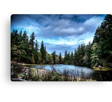 Inland water Canvas Print
