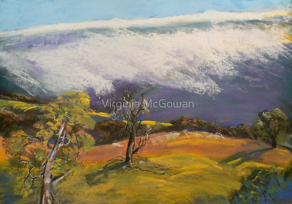 Snow Storm Victorian Alps  by Virginia McGowan