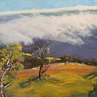 Snow Storm Victorian Alps  by Virginia McGowan