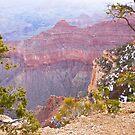 Grand Canyon by Bryan  Keil