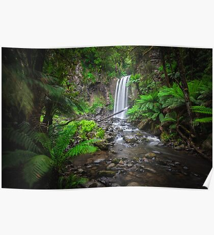 Lushness of the Rain Forest Poster
