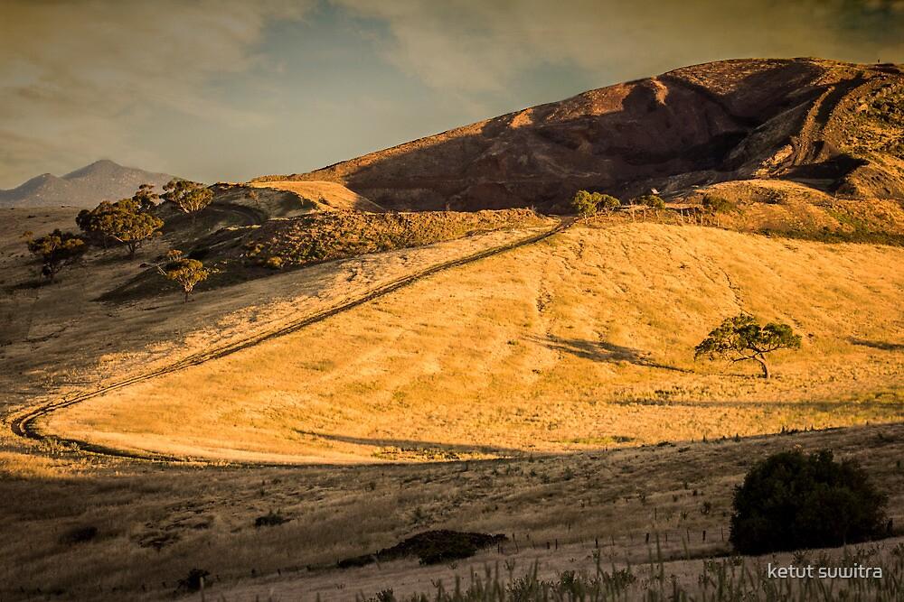 the hill side by ketut suwitra