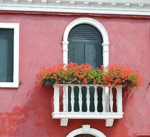 Burano Windowbox by Helen Greenwood