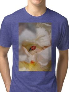 Ladybug Dreams Tri-blend T-Shirt