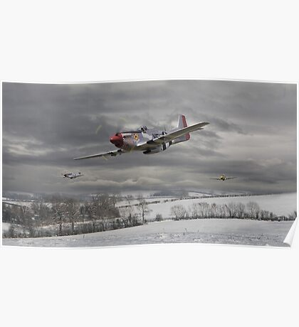 P51 Mustang - Winter Freedom Poster