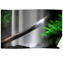 Rainforest Waterfall Poster