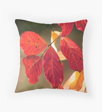 Autumn Heat Throw Pillow