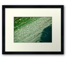 Glasland # 54 Framed Print