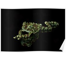 Vietnamese Mossy Frog Poster