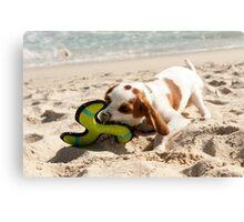 Toys at the Beach Canvas Print