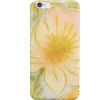 Fantastic Placid Awesome Amusing iPhone Case/Skin