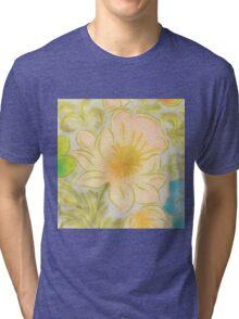 Fantastic Placid Awesome Amusing Tri-blend T-Shirt