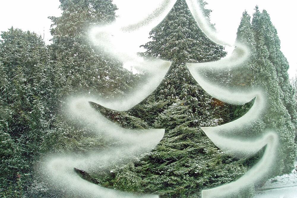 Christmas tree on and behind the window by Arie Koene
