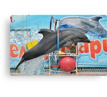 Dolphinarium in Anapa Canvas Print
