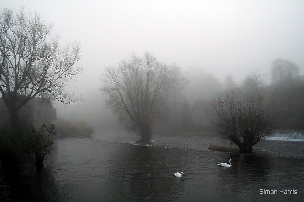 Teme Swans by Simon Harris