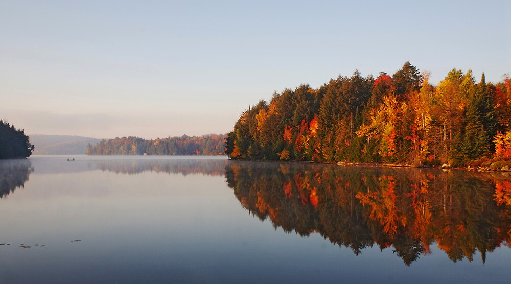 Canada - Fall Colours in Algonquin by Pat Speirs