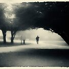 Into the mist by Trish  Anderson