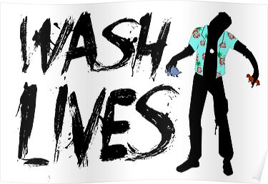 Wash Lives by Sarah Hendricks