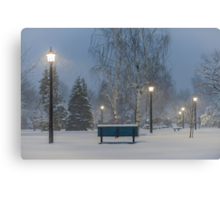 Winter At Home Canvas Print