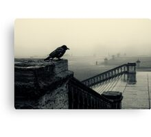 Bird's eye view Canvas Print