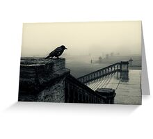 Bird's eye view Greeting Card