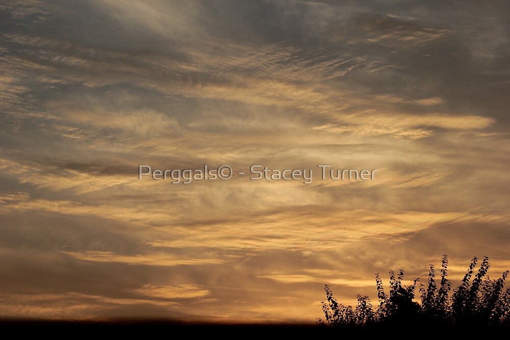 cross hatched sky by Perggals© - Stacey Turner
