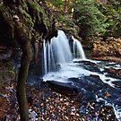 Mohawk Falls by Marty Straub