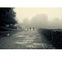 Walking the dogs Photographic Print