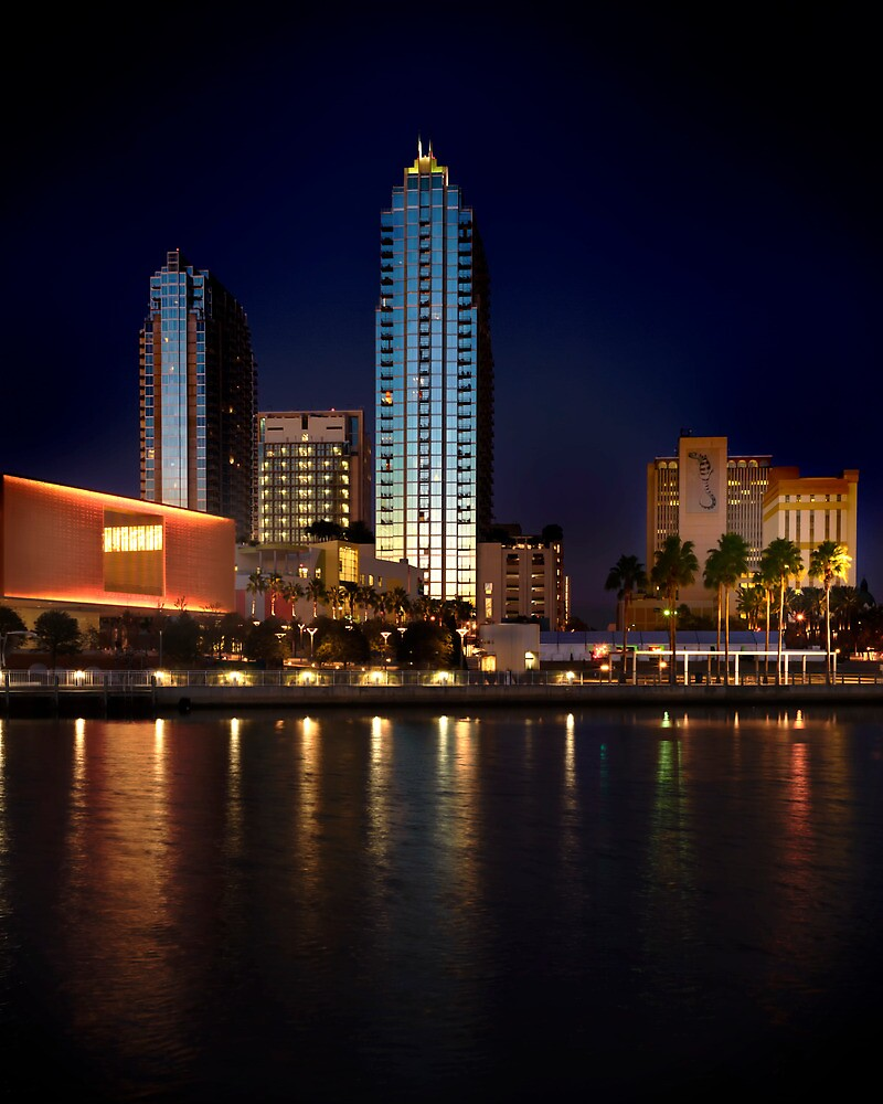 Tampa at Night by james smith