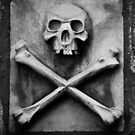 Skull & Crossbones iPad Case by Ron Hannah