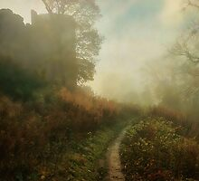 Castle Walk by Simon Harris
