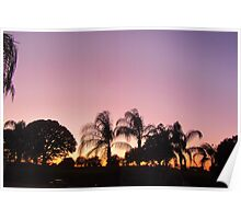 Sunset in Deer Creek, Davenport, FL Poster