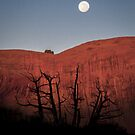 Harvest Moon by Armando Martinez