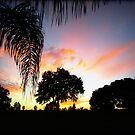 November Sunset in Florida by Debbie Robbins