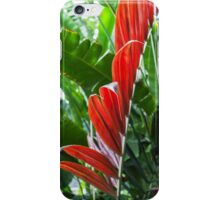 Red Leaf iPhone Case/Skin