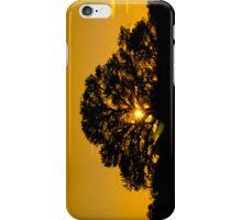 Sun Tree iPhone Case/Skin